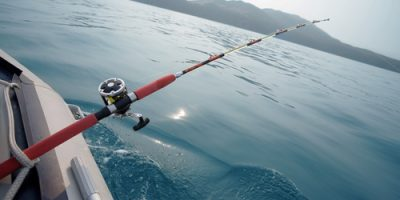 Fish Like a Pro: Fishing Gear Information for Beginners